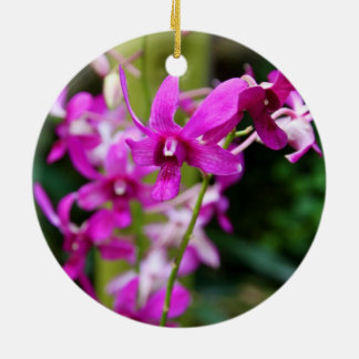 Ornament - Cooktown Orchid