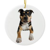 Ornament - déco of Christmas - Idol Design