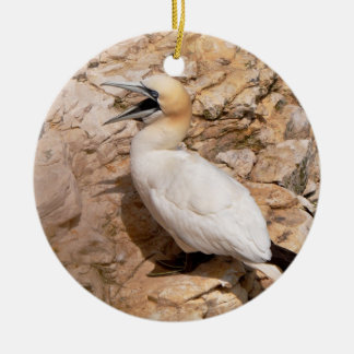 Ornament: Laughing Gannet Ceramic Ornament