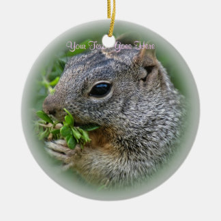 Ornament: Munchy Squirrel (Circle) Ceramic Ornament