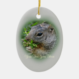Ornament: Munchy Squirrel (Oval) Ceramic Ornament