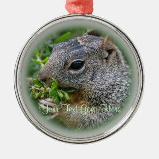 Ornament: Munchy Squirrel (Premium Round) Metal Ornament