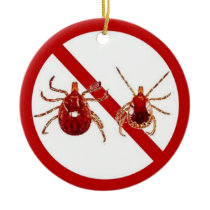 Ornament or Door Hanger, No Lyme!