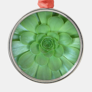 Ornament Pewter with Succulent Photo