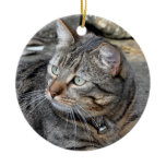 Ornament: Tabby cat Double-Sided Ceramic Round Christmas Ornament