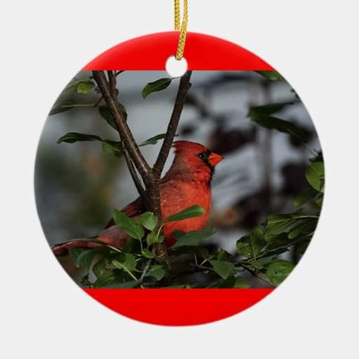 Ornament with Cardinal