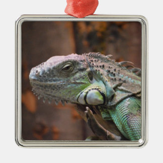 Ornament with colourful Iguana lizard