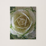 Ornamental Cabbage Puzzle/Jigsaw with Tin