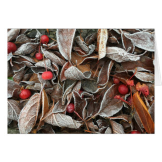 Ornamental Cherries and Autumn Leaves in Frost Card