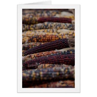 Ornamental Corn Card
