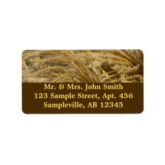 Ornamental Grasses in Fall Label