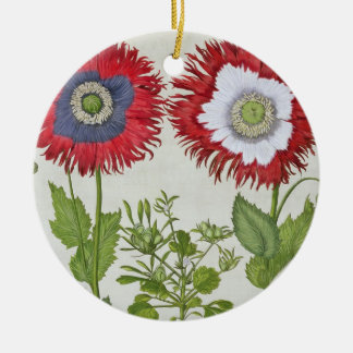 Ornamental Poppies, from the 'Hortus Eystettensis' Ceramic Ornament