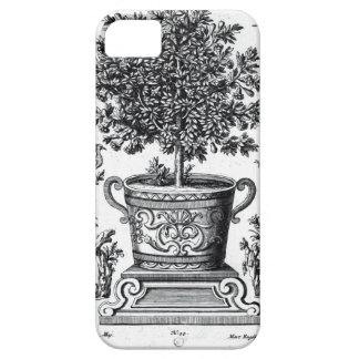 Ornamental tree in an urn on a small stage (engrav iPhone SE/5/5s case
