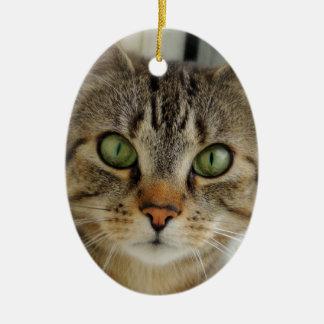 Ornamentation cat ceramic ornament
