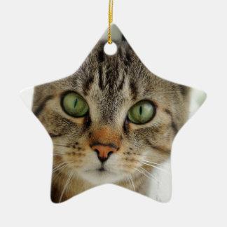 Ornamentation star shaped cat ceramic ornament