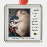 Ornamento 2010 del navidad del chicloso ornaments para arbol de navidad