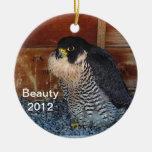 Ornamento 2012 de la belleza adorno redondo de cerámica