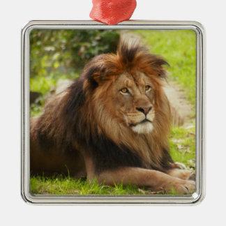 Ornamento africano del león adorno navideño cuadrado de metal