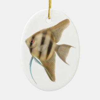 Ornamento agraciado del Angelfish Adorno Navideño Ovalado De Cerámica