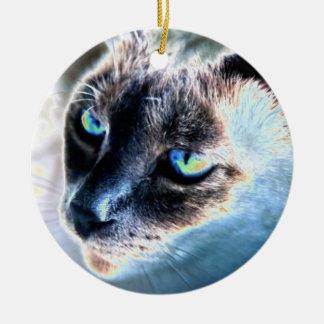 Ornamento alterado reservado del círculo del gato adorno de reyes