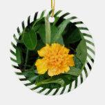 Ornamento amarillo de la flor de la maravilla ornamentos de reyes