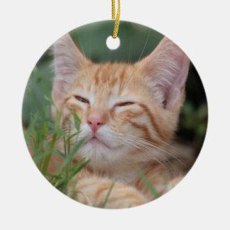 Ornamento anaranjado del gatito del Tabby Adorno Redondo De Cerámica