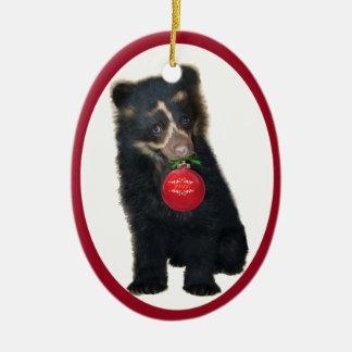 Ornamento andino de la fundación 2011 del oso adorno ovalado de cerámica