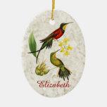 Ornamento ardiente de los colibríes del Topaz Ornatos