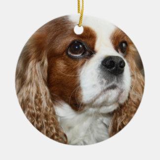 Ornamento arrogante del perro de aguas de rey adorno navideño redondo de cerámica