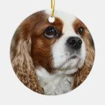 Ornamento arrogante del perro de aguas de rey adorno redondo de cerámica