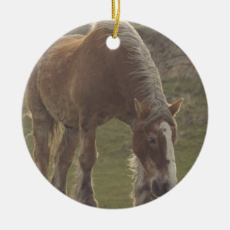 Ornamento belga del caballo de proyecto adorno navideño redondo de cerámica