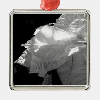 Ornamento blanco del Poinsettia Adorno Navideño Cuadrado De Metal