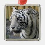 Ornamento blanco del premio del tigre adorno de reyes