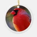Ornamento-Cardinal Ornamentos Para Reyes Magos