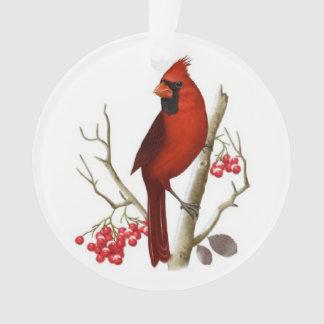 Ornamento cardinal rojo del navidad