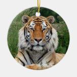 Ornamento colgante de la foto hermosa principal adorno de navidad