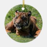 ornamento colgante del cachorro de tigre, actual adorno de reyes
