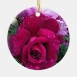 Ornamento color de rosa púrpura ornamentos de reyes