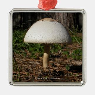 Ornamento cuadrado del premio de Shroom 0659 Adorno Navideño Cuadrado De Metal