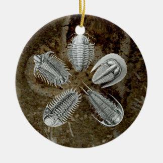 Ornamento de 5 Trilobites Ornaments Para Arbol De Navidad