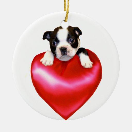Ornamento de Boston Terrier del amor Adorno