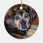 Ornamento de Chrstmas del perro de Puggle Ornamentos De Reyes Magos