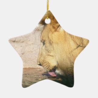 Ornamento de consumición del león ornamentos para reyes magos