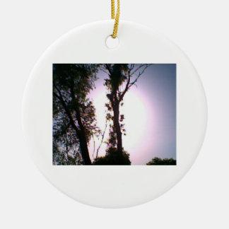 ornamento de DNatureofDTrain del árbol del enlight Ornatos