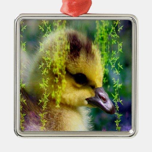 Ornamento de Gosling del bebé Ornamentos De Reyes