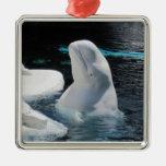 Ornamento de la ballena de la beluga ornamentos de reyes