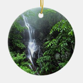 Ornamento de la cascada ornato