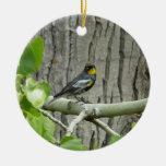 Ornamento de la curruca de Audubon Adorno De Navidad