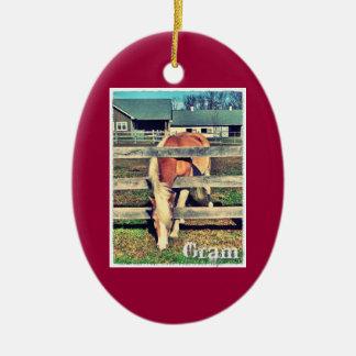 Ornamento de la edición de lujo del gramo adornos de navidad
