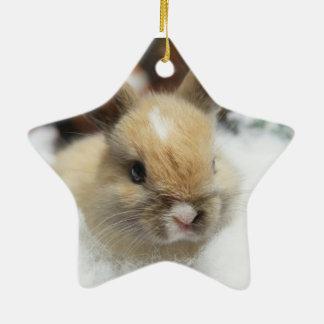 Ornamento de la estrella del conejo de conejito adorno navideño de cerámica en forma de estrella
